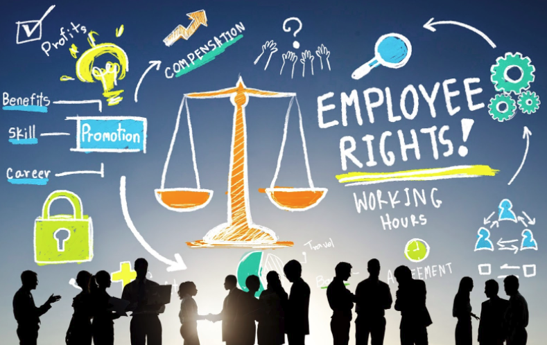 Youth Employment Standards